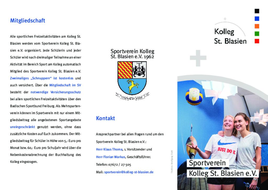 Flyer Sportverein